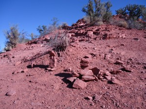Staked Sedona Red Rock